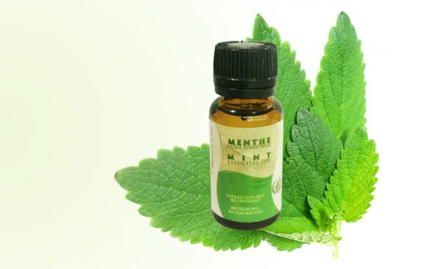 mint essential oil by Atlas Cosmetics